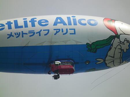 Alico3